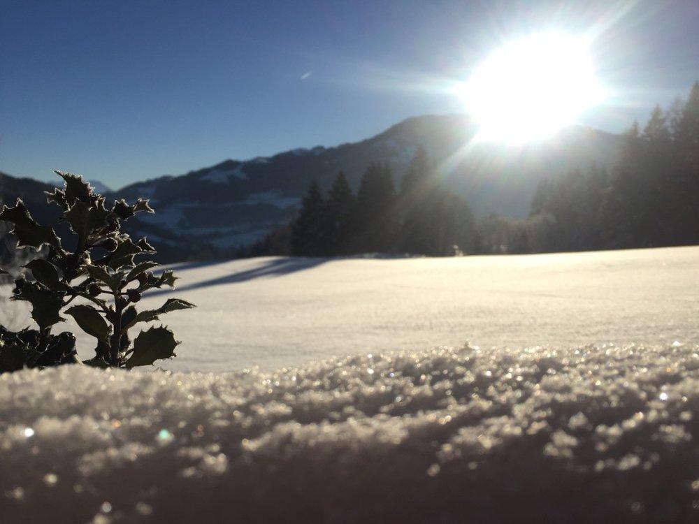 WinterZeit - Glitzer.jpg