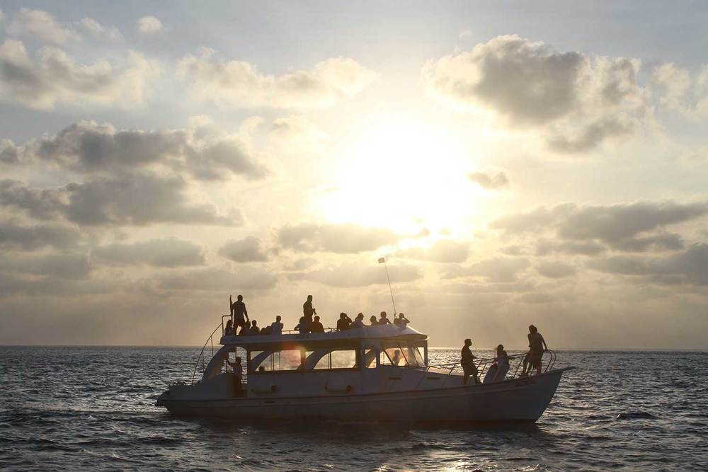 Book a Sunset Cruise