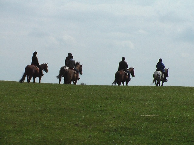 horse-riders-020nw6.jpg