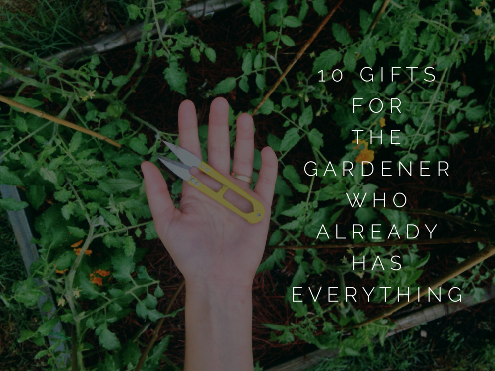 10 Gifts For The Gardener Who Already Has Everything