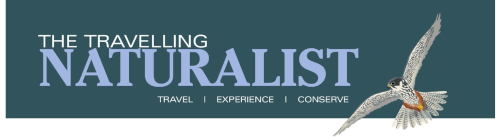 The Travelling Naturalist Logo with Hobby.jpg