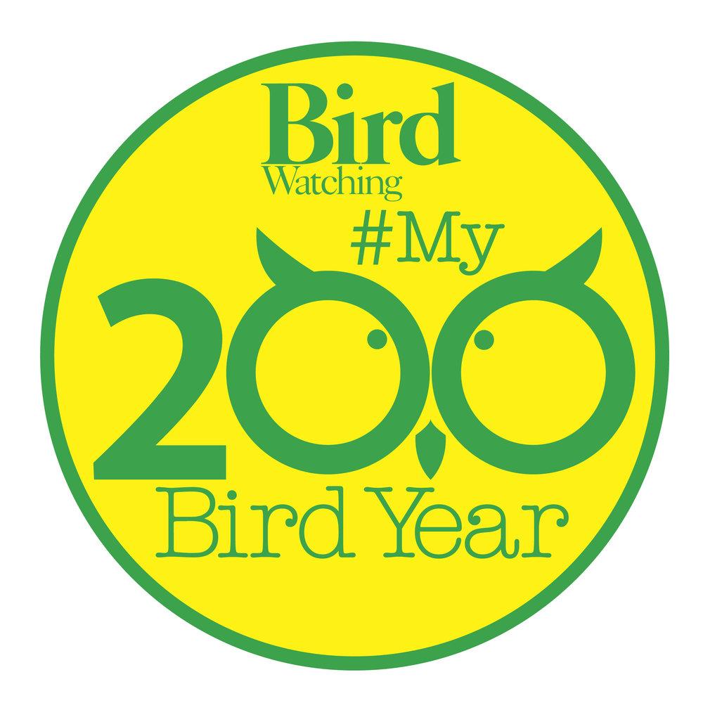 Green-yellow logo.jpg