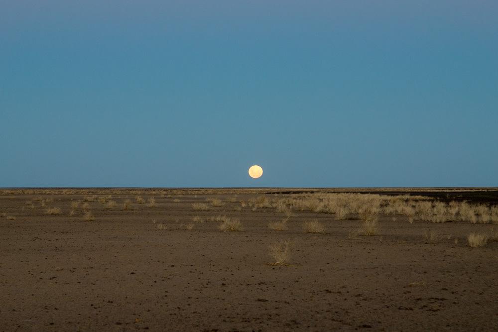 DSC09886_moon.jpg