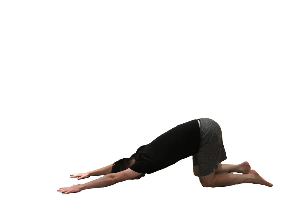 3.As you breathe in, lower your hands and forehead onto the floor into (Puppy Dog) - Keep your hips in line with your knees and straighten your arms, another option is to rest your head onto a blanket or pillow creating a more restorative pose.