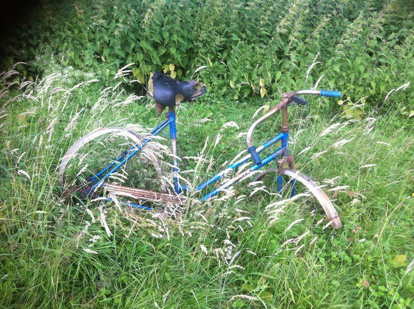 Dieses Fahrrad löste komischerweise bei mir kein Mitleid aus - eher entspanntes Lachen ;)