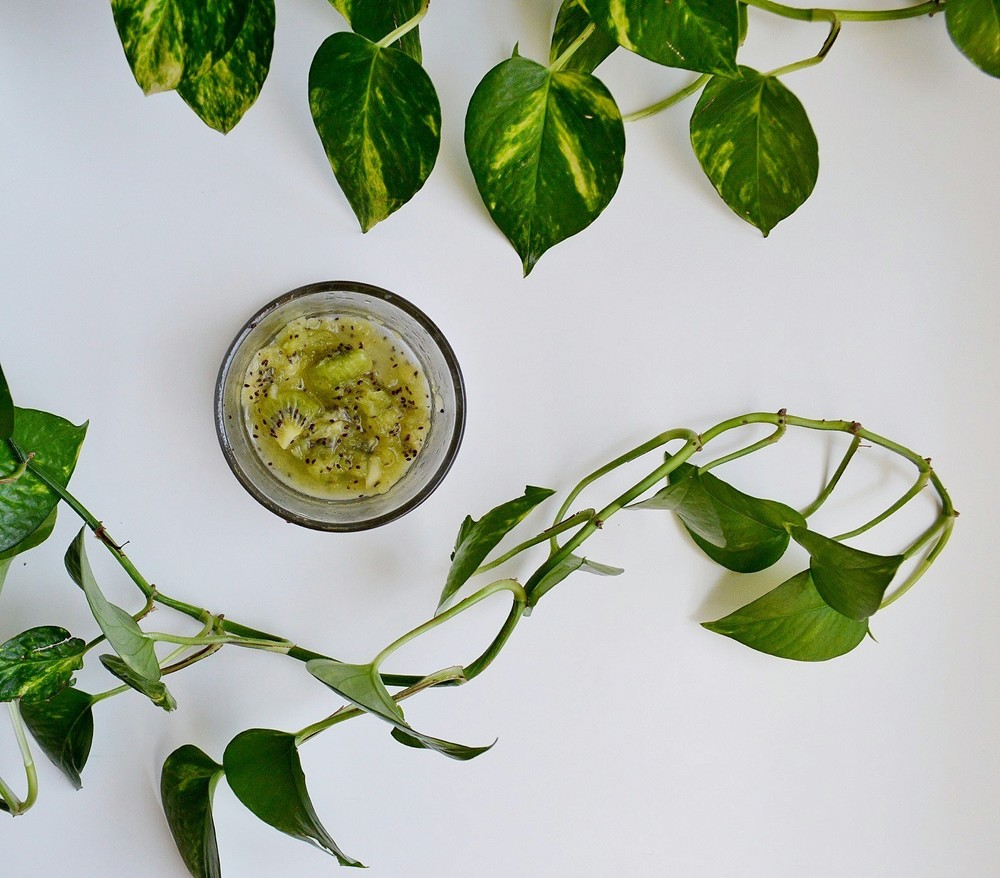 3 Spring DIY Recipes Inspired by Willow and Sage