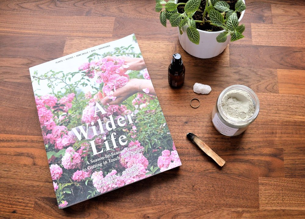 How to Incorporate Winter Herbs into Your Skincare Routine
