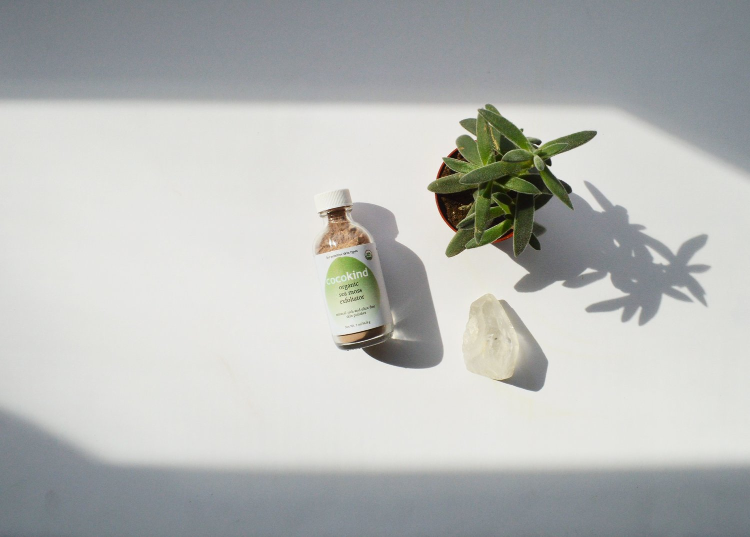 Simple and Sustainable — How to Exfoliate with the Cocokind Organic