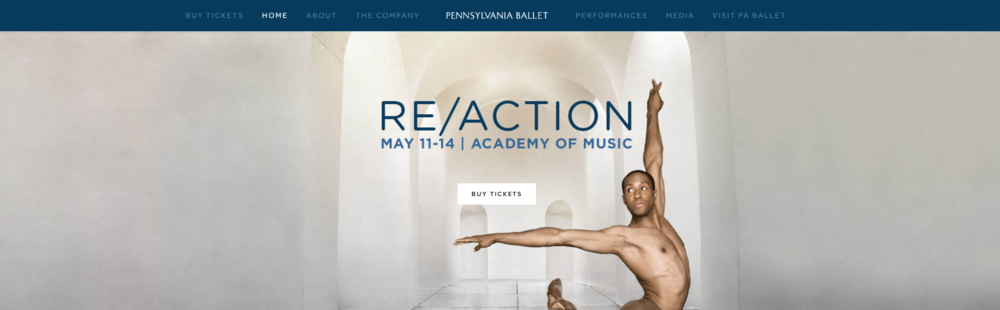 Re/Action Microsite on Squarespace