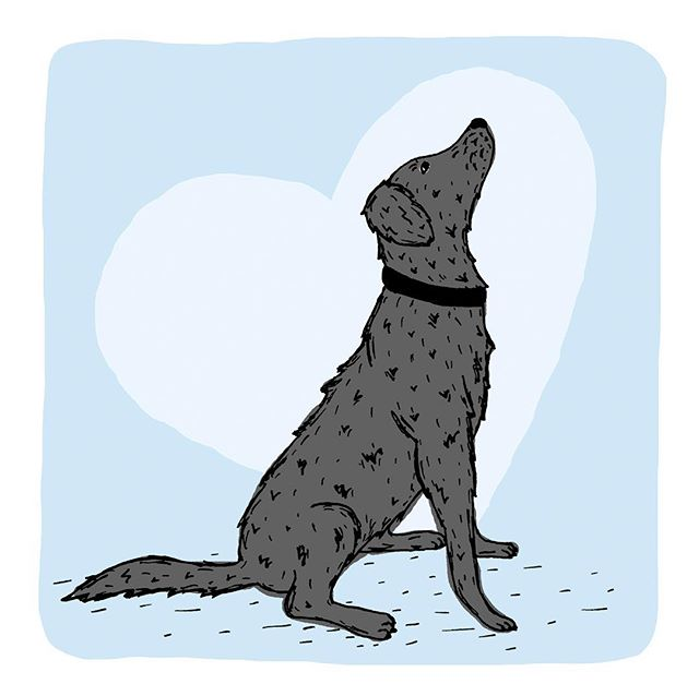"Happy Valentine's Day! ""Love is a wet nose and wagging tail"" #happyvalentinesday #valentinesday #love #labrador #illustration #illustrator #dog #graphicdesign #graphicdesigner #artist #illustratorsofinstagram #card #design #cute #carddesign #draw #instagood #picame #sketch"