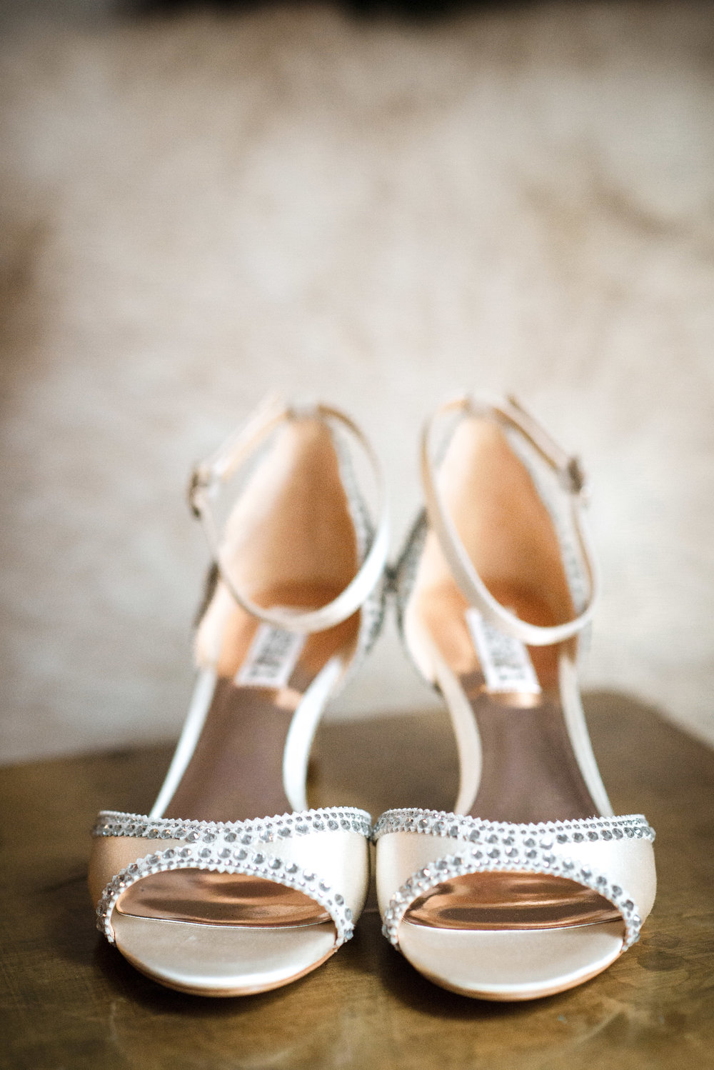 Wedding Shoe Detail Photo 1.jpg