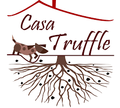 Casa Truffle™ was founded in Alba, Italy. Truffles are one of the world's most desired delicacies, and the black and white truffles from Alba are among the best and most coveted in the world. Through the efforts of Casa Truffle™, Alba truffles and truffle products will now be available to the U.S. market.   www.casatruffle.com   ___________________________   We use their black truffles to make our Black Truffle Infused Sea Salt