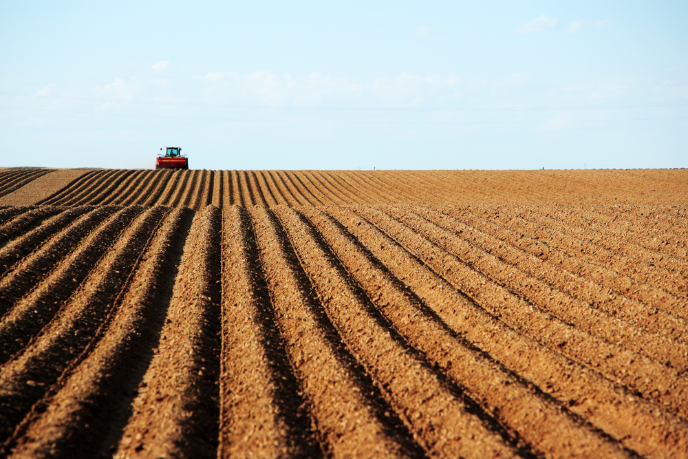 stock-photo-farm-machinery-planting-potatoes-93954184.jpg