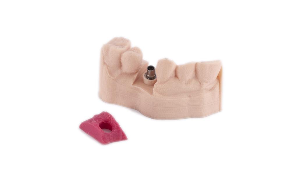 Arfona Soft Tissue Model.png