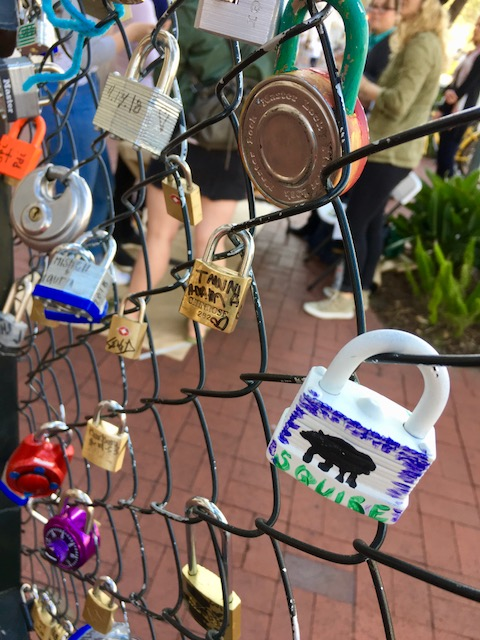 Painted Love Locks