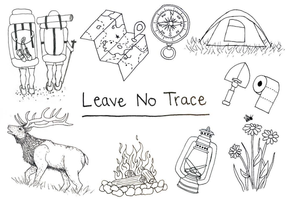 Leave No Trace editorial illustration.png