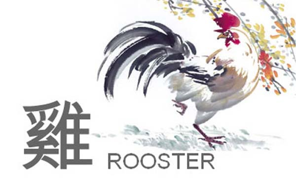 A Water Rooster is a calm person who are meticulously responsible, alert, and neat. They are devoted and proud people but don't get too egotistical!