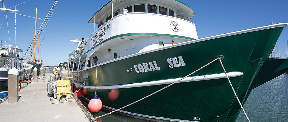 coral_sea.jpg