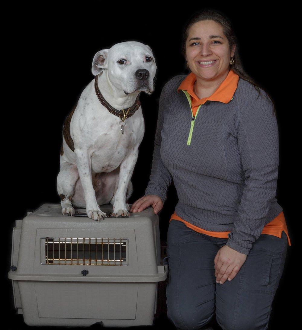 R.J. - American Pitbull TerrierCGC, CGCA, CZ8PS, RATCH,RATI, RATO, RATM, RATN, RATS