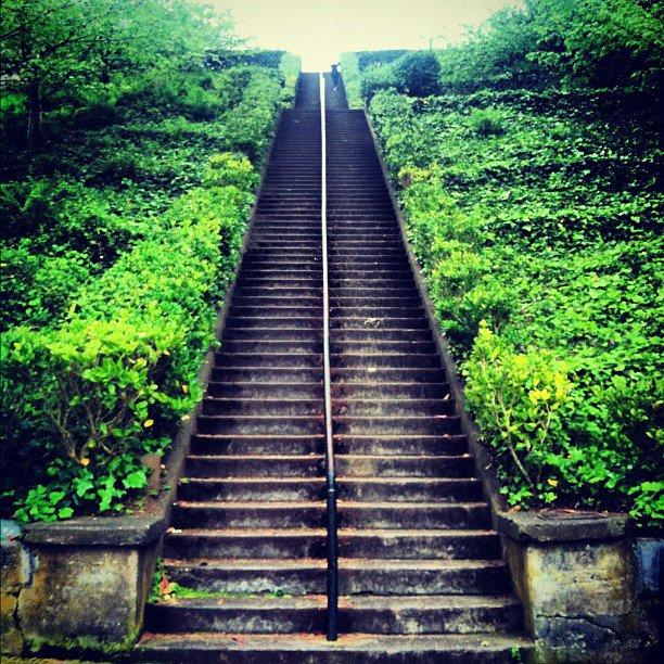 Lyon Steps.jpg