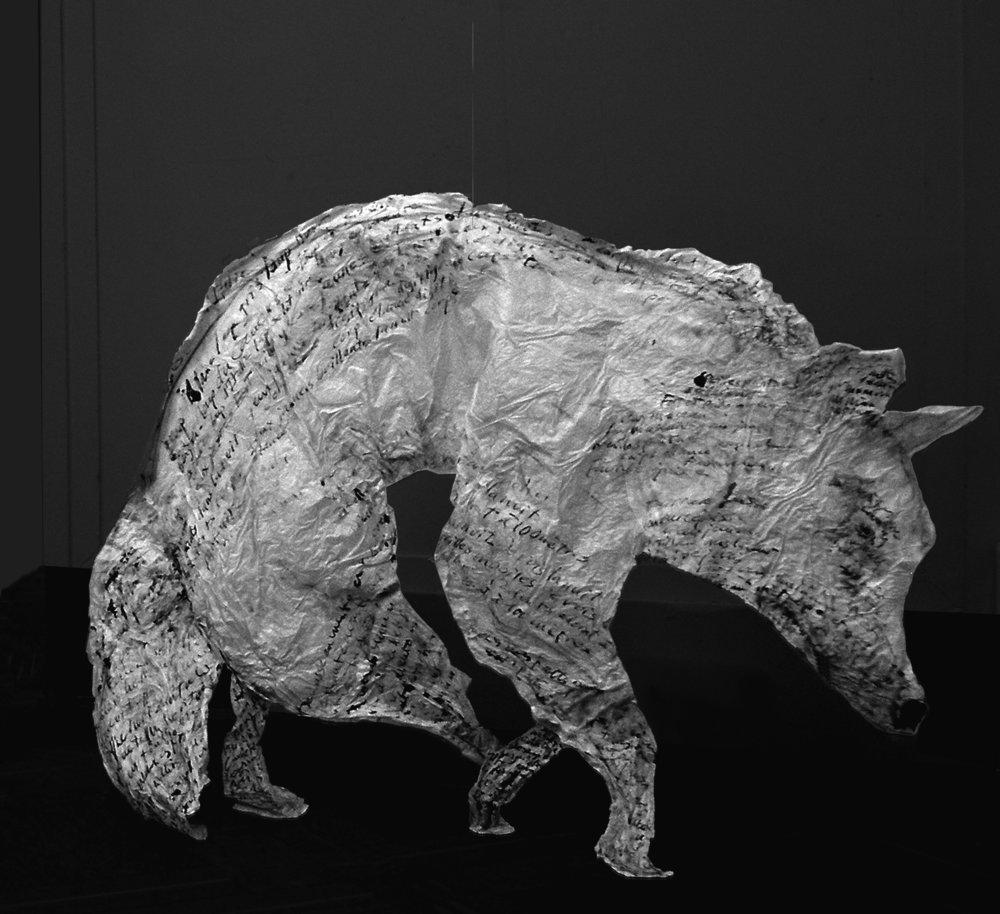 Loup fureteur 2.jpg