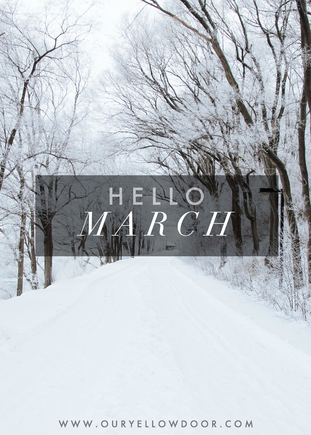 Hello March Monthly Goals