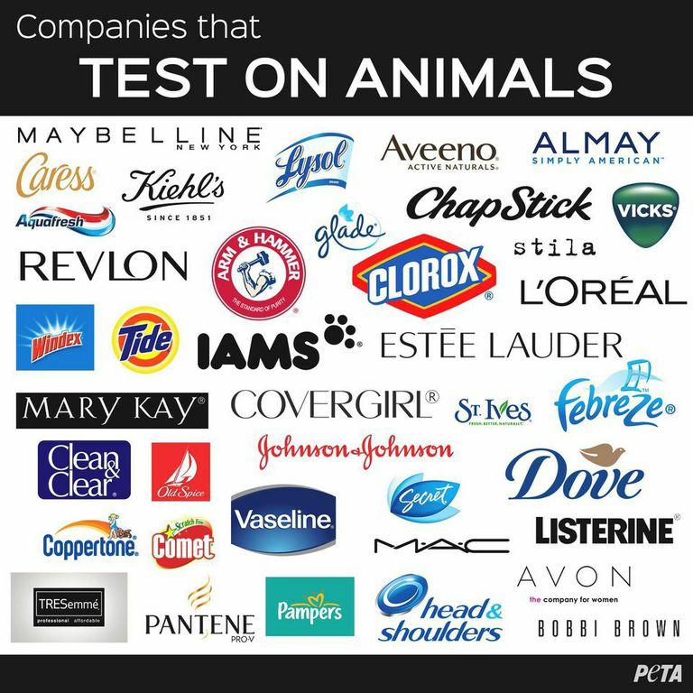 Companies that Use Animal Testing