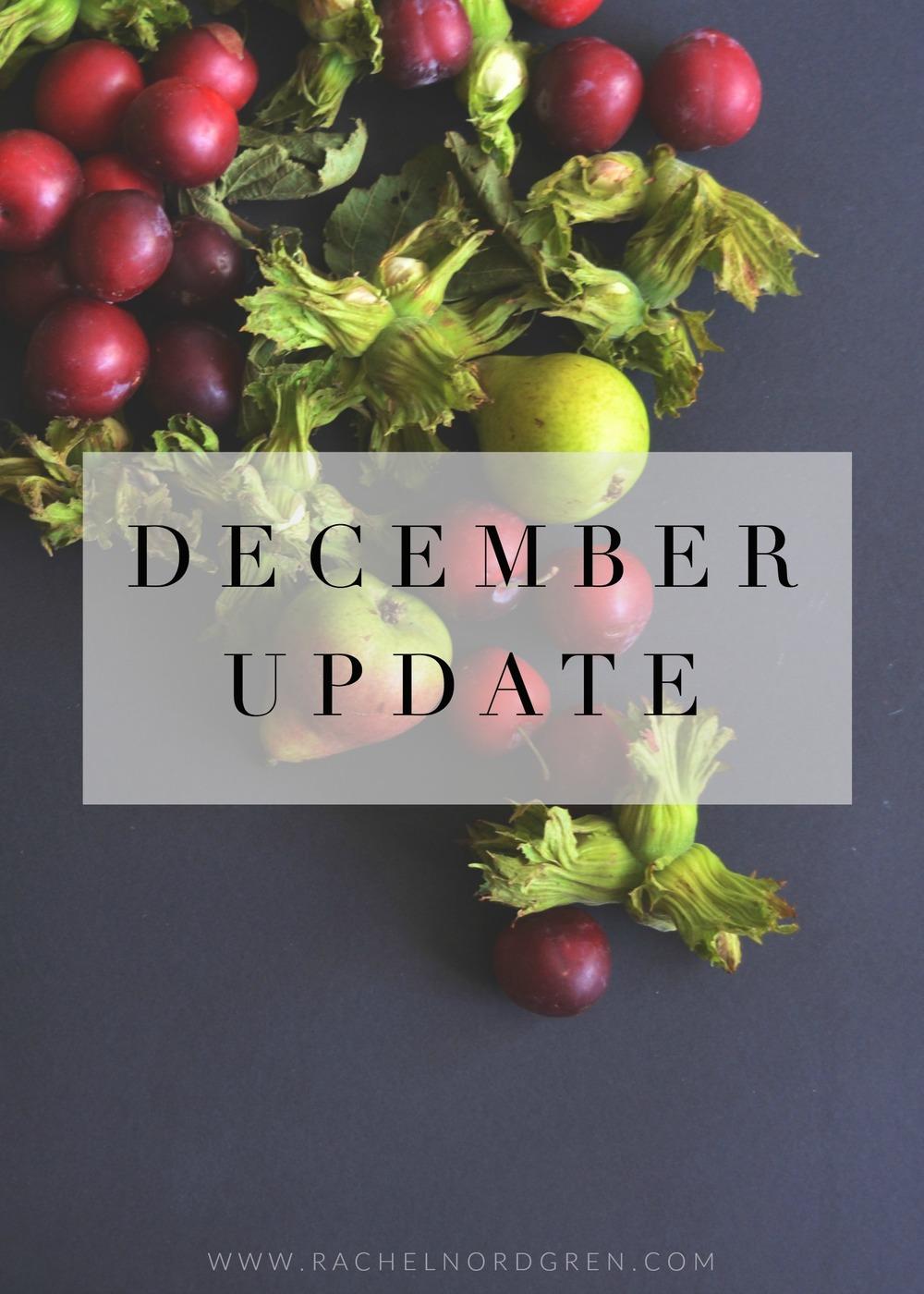 Rachel-Nordgren-December-Update.jpg