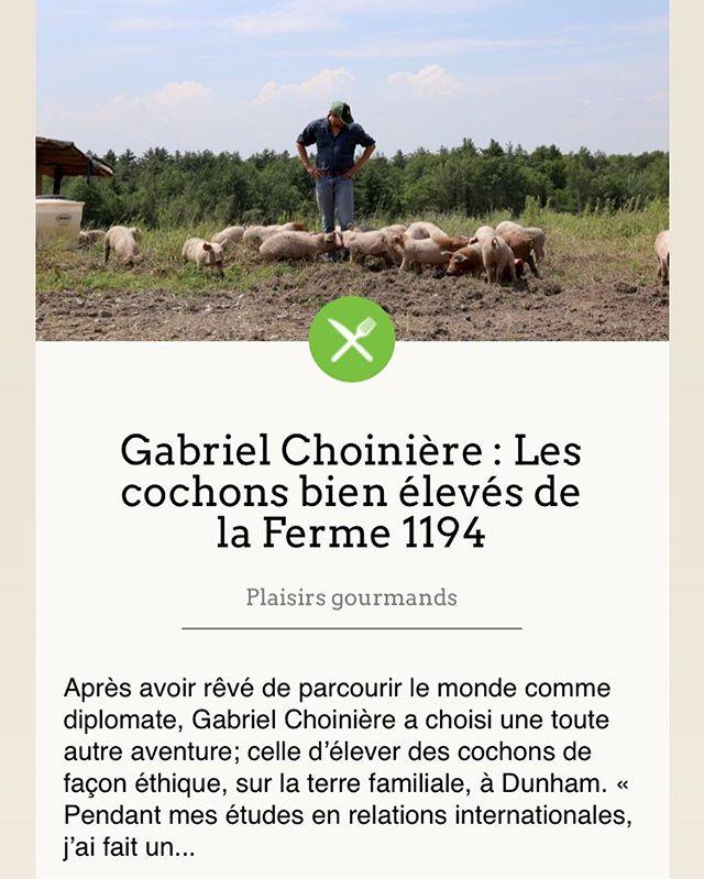 Merci tourismebrome-missisquoi.ca et Geneviève Vézina-Montplaisir de @cariboumagazine pour le bel article!