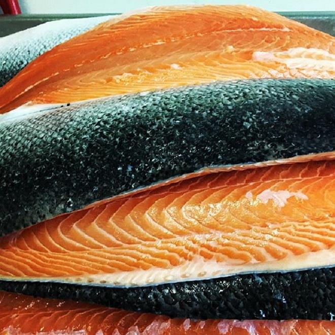 farmed salmon.jpg