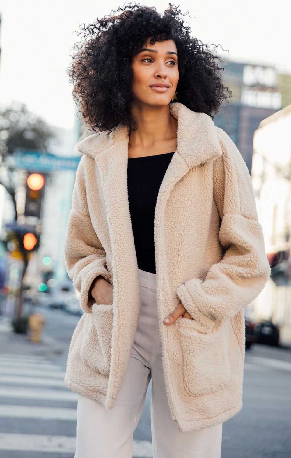 What to Wear  5 Winter Coats All Under  100 — SIMPSTYLE 3446e0518a60