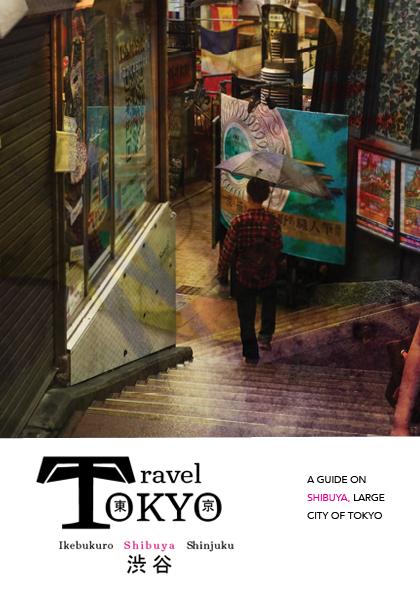 2016-12 Final Tokyo Booklet.png