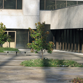 SAIF Parkway Building