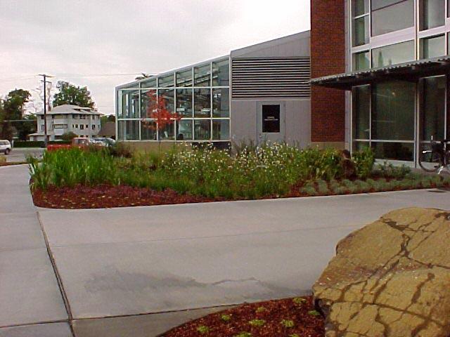 greenhouse exterior w landscape.jpg