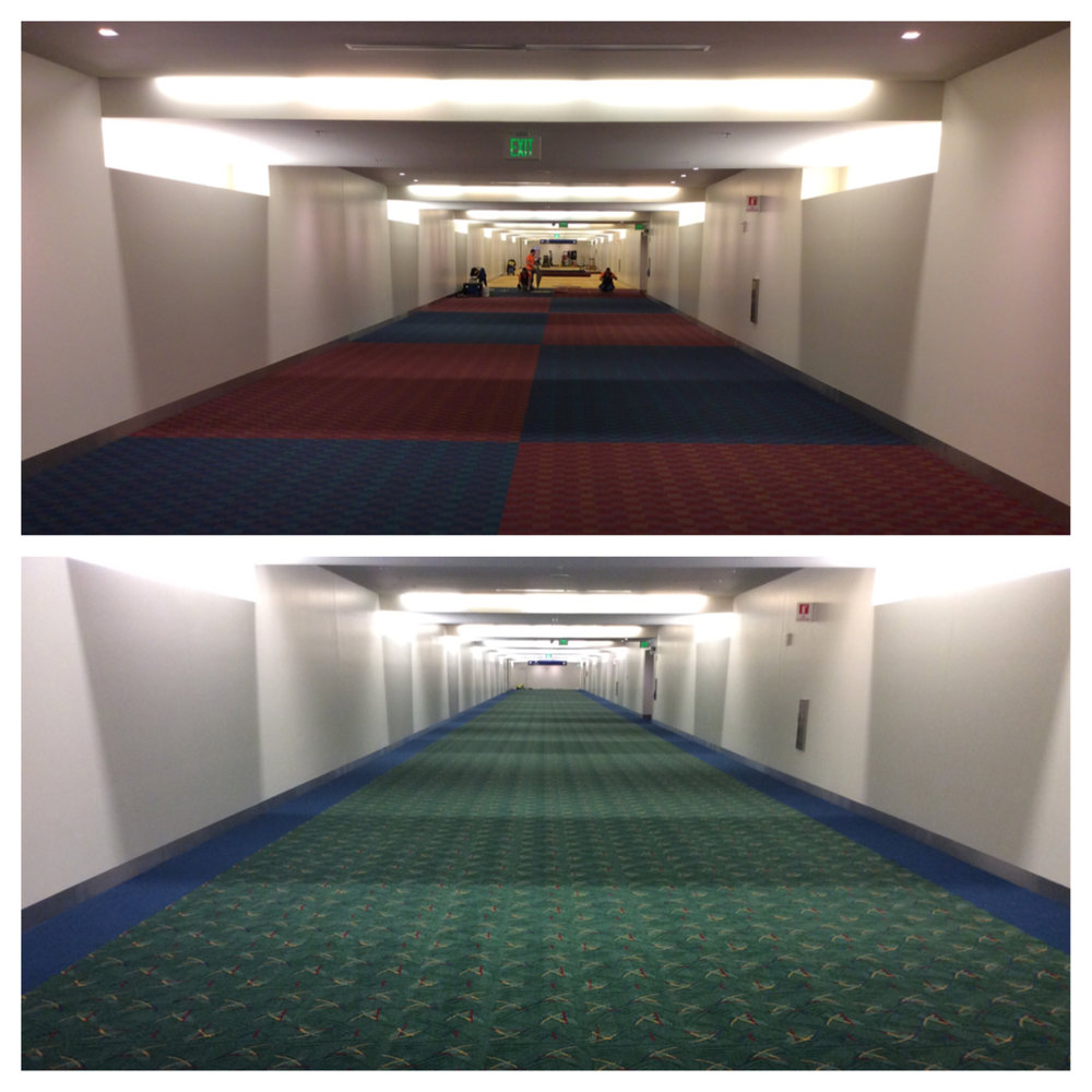 PDX Carpet_Image_1_In.jpg