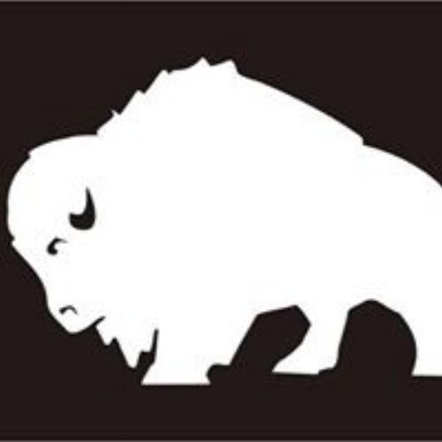 whitebuffalo.jpg