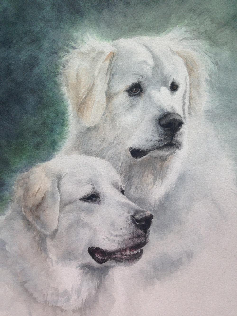 Brie and Bella