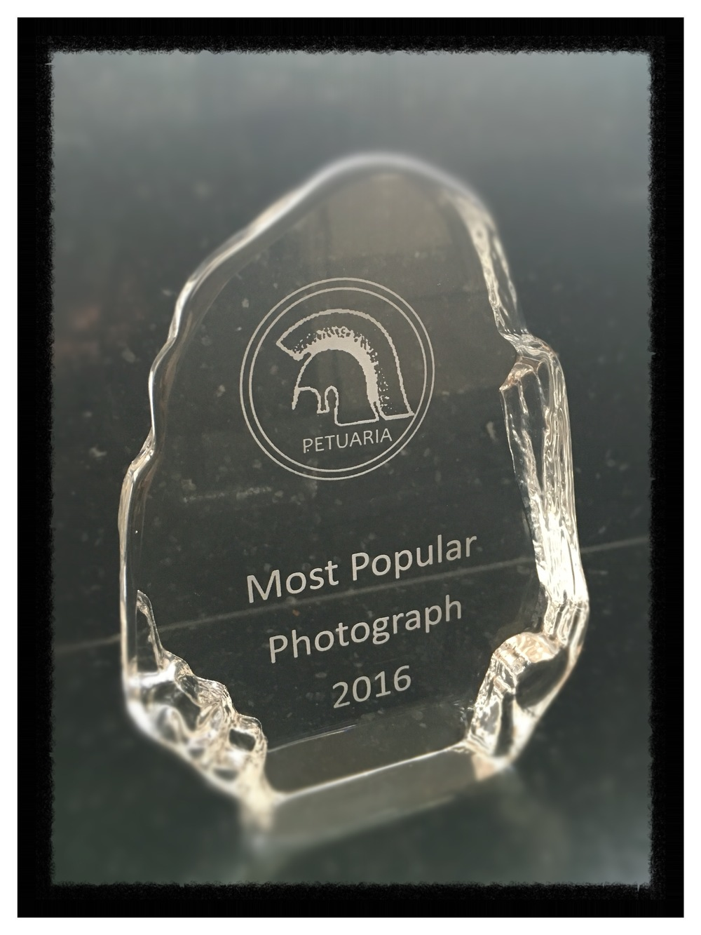Trophy - most voted for photograph
