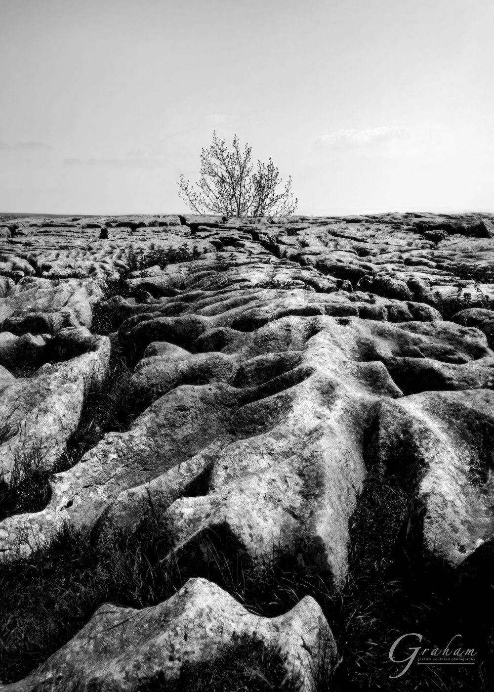 The limestone pavement at the top of Malham Cove