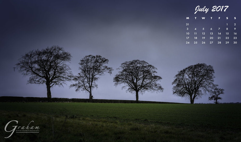 July 2017 - Trees in the stormClick the image to open and download