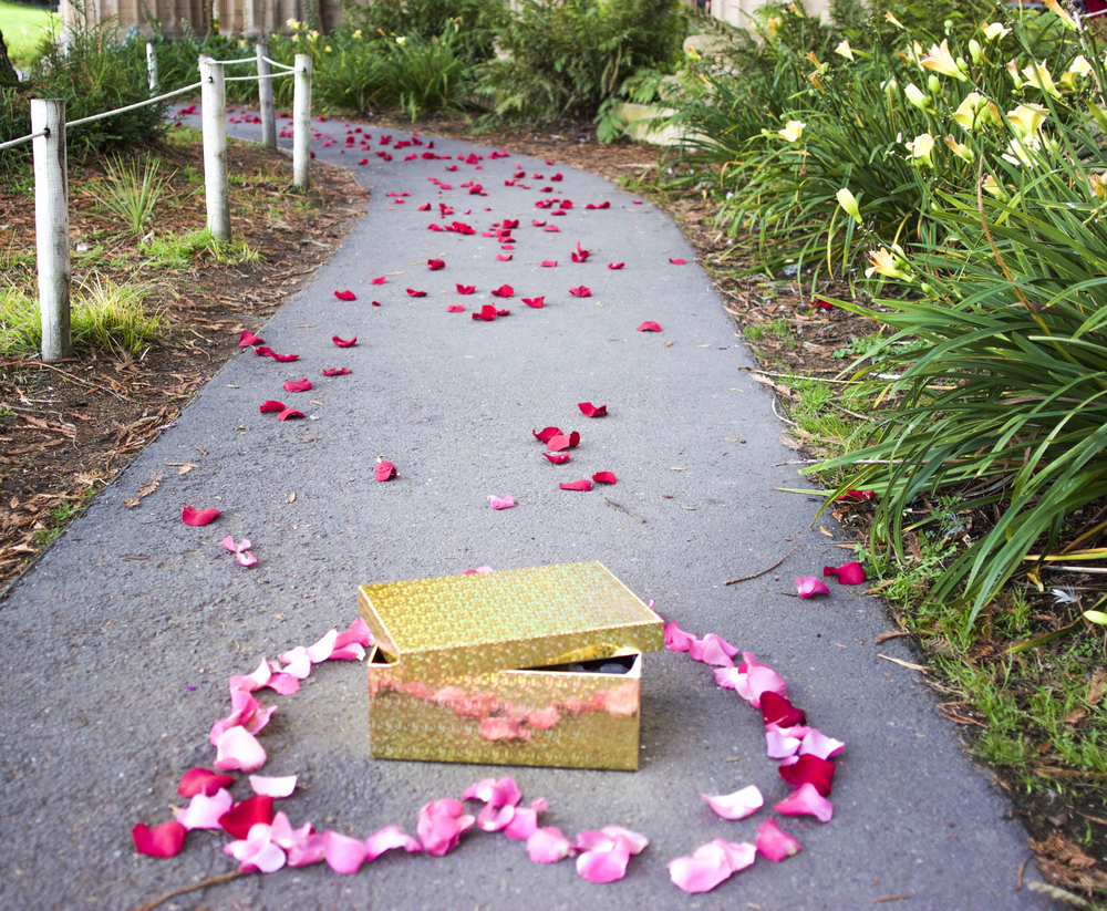 Palace of Fine Art Rose Petals | Forever Taeken Weddings