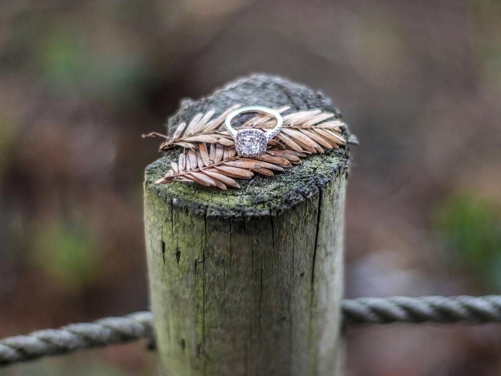 Palace of Fine Art Engagement Ring | Forever Taeken Weddings