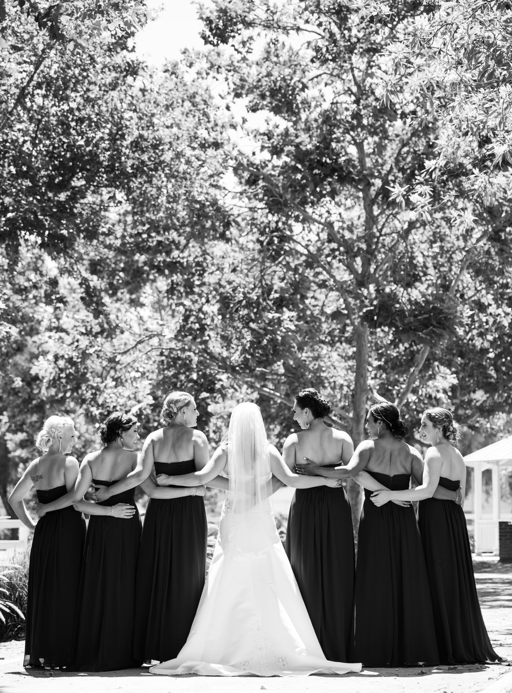 Forever Taeken Bridal Party at McCoy Equestrian Center