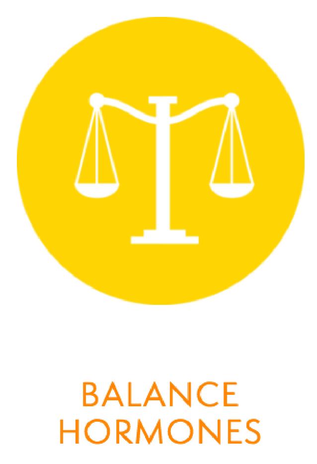 Copy of Well Works - Functional Medicine - Balance Hormones