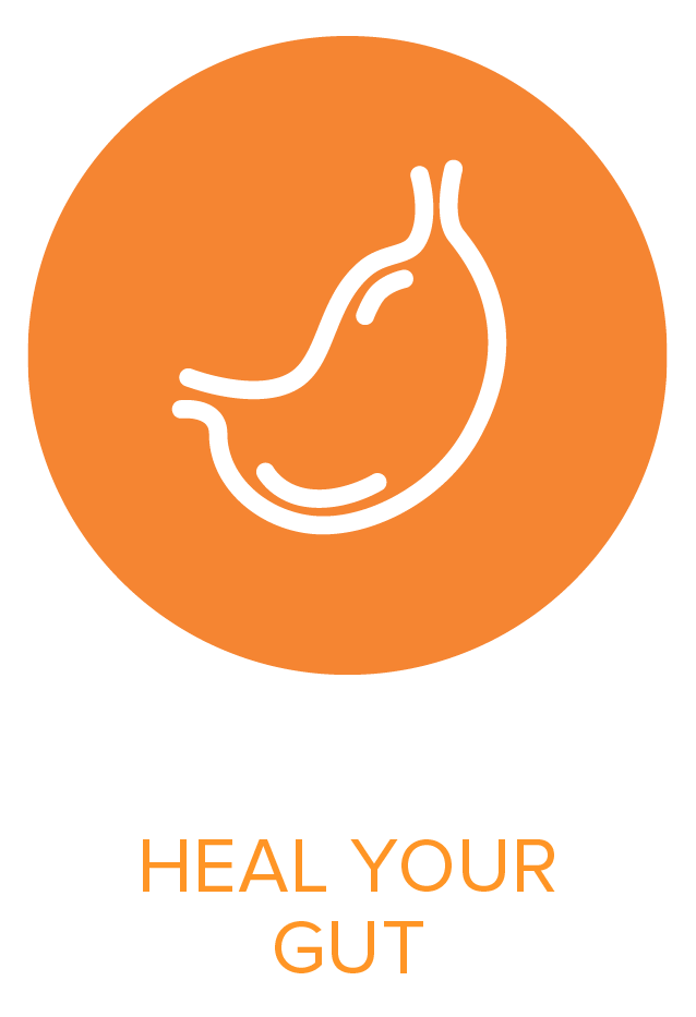 Well Works - Functional Medicine - Heal Your Gut