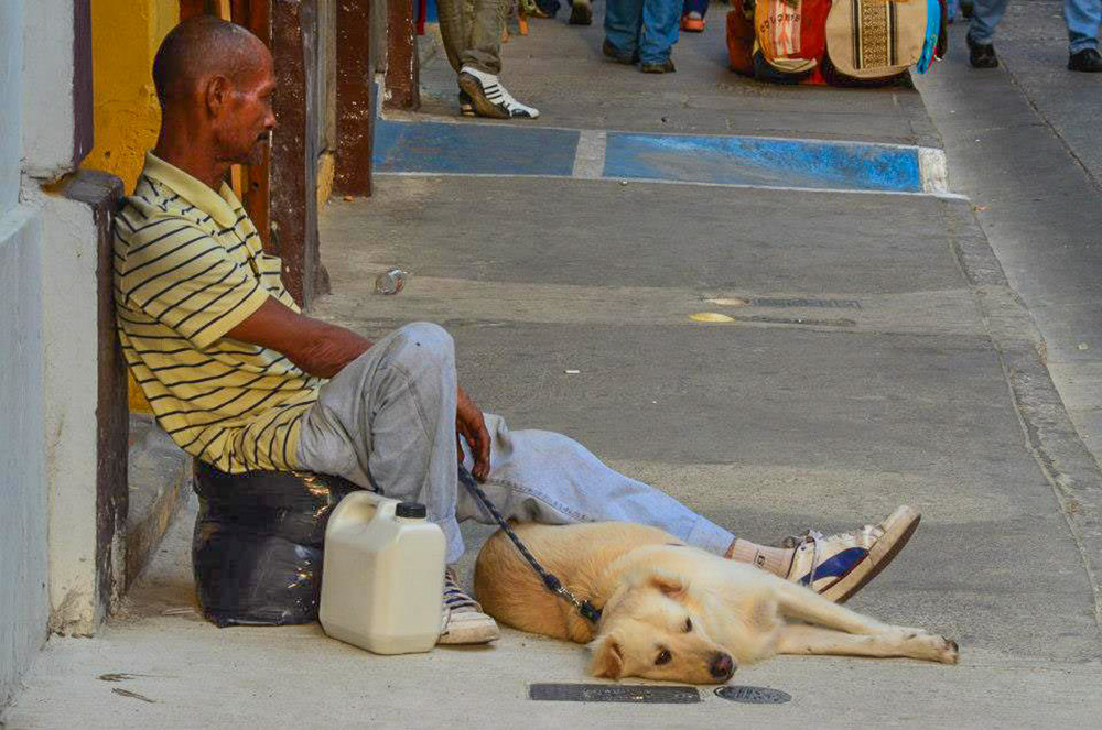Cartagena, Colombia - man's best friend, regardless of man's circumstances