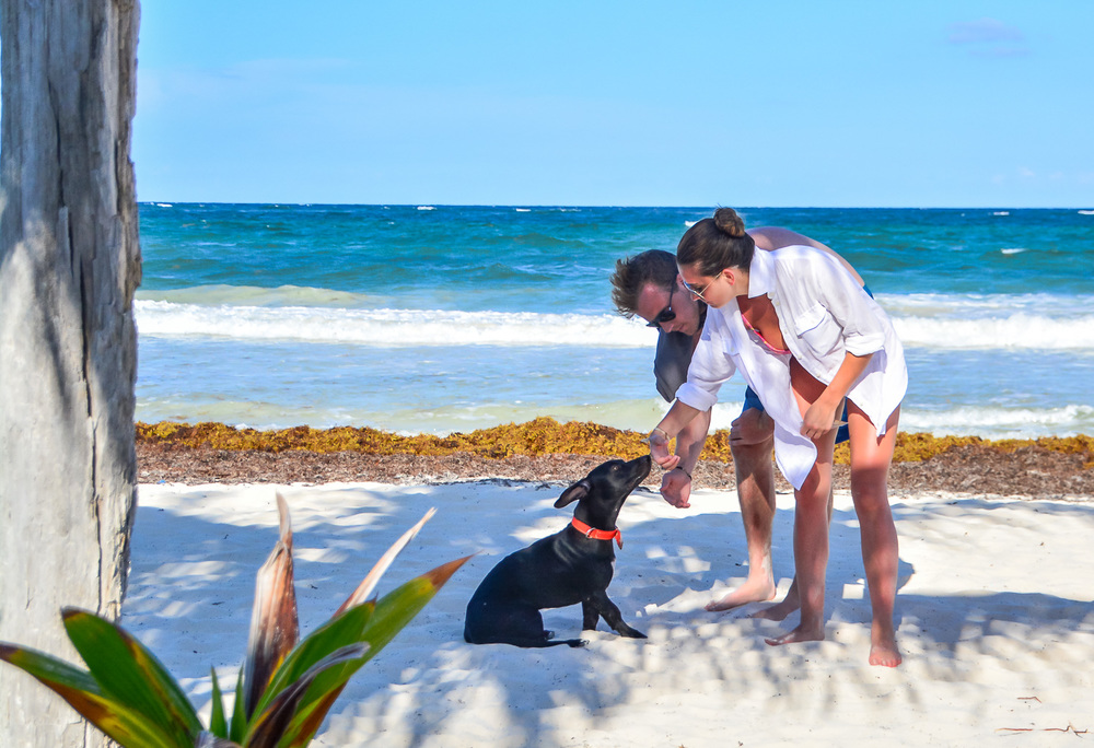 Berto winning the hearts of strangers - Tulum, Mexico