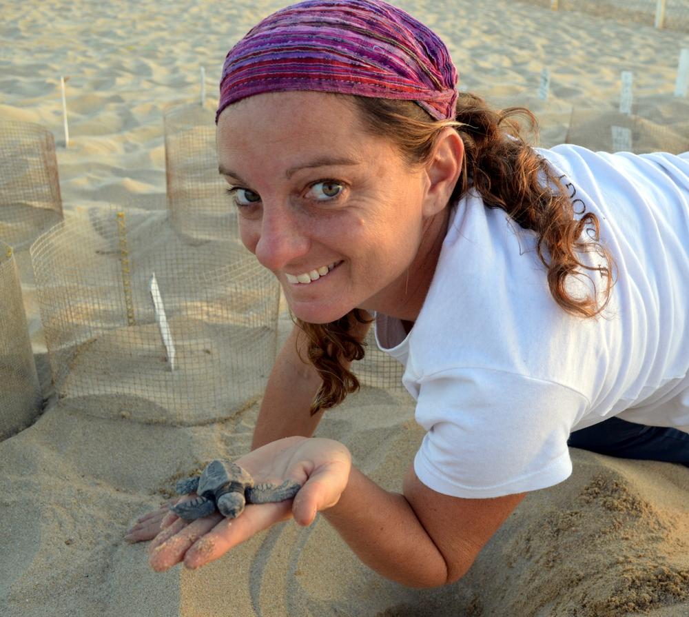 Sea Turtle Camp