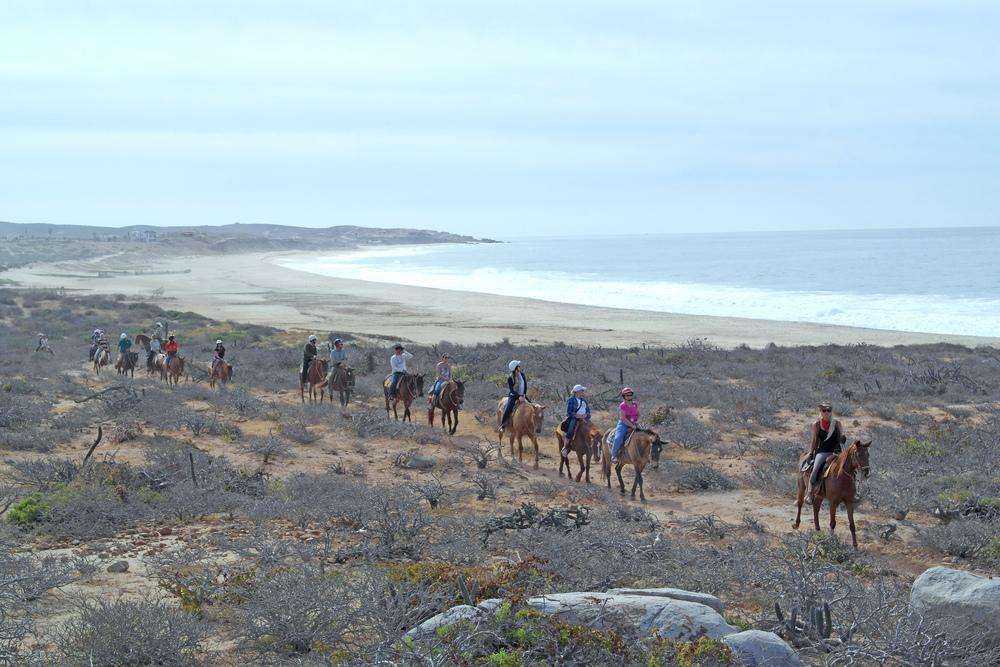 horseback-tour.jpg