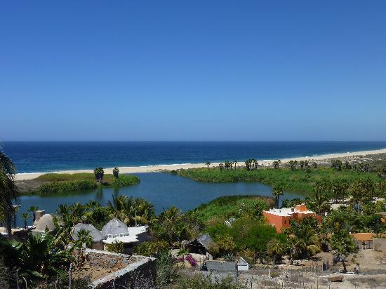 estuary-near-todos-santos.jpg